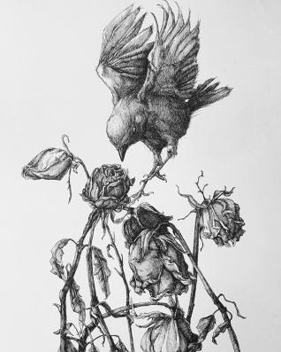 The Bird and the Dead Roses