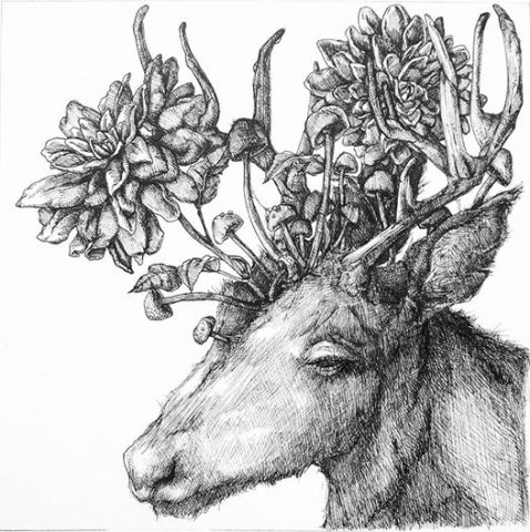 Deer and Dahlias