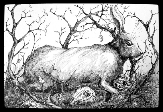 Hare in the Brambles with Skulls