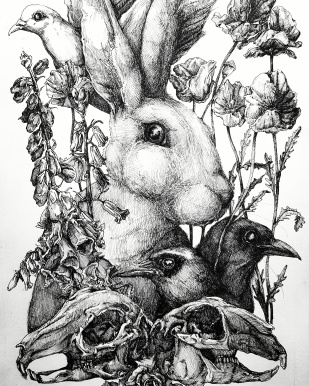 A Rabbit sits amongst poppies, foxgloves and bluebells. A rose nestles between two rabbit skulls whilst the magpies look on.